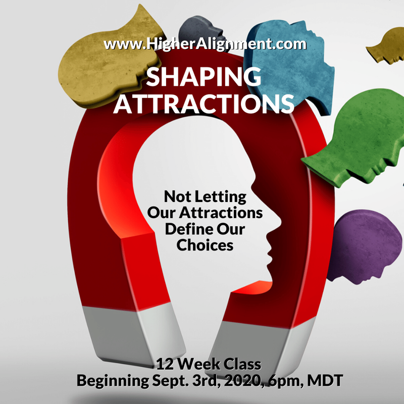 Picture of ***Shaping Attractions (SA) 2020 ***   Self-paced 12-part Series